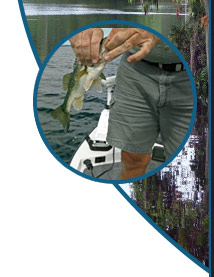 Captain gene fishing home page for Can you get a fishing license at walmart